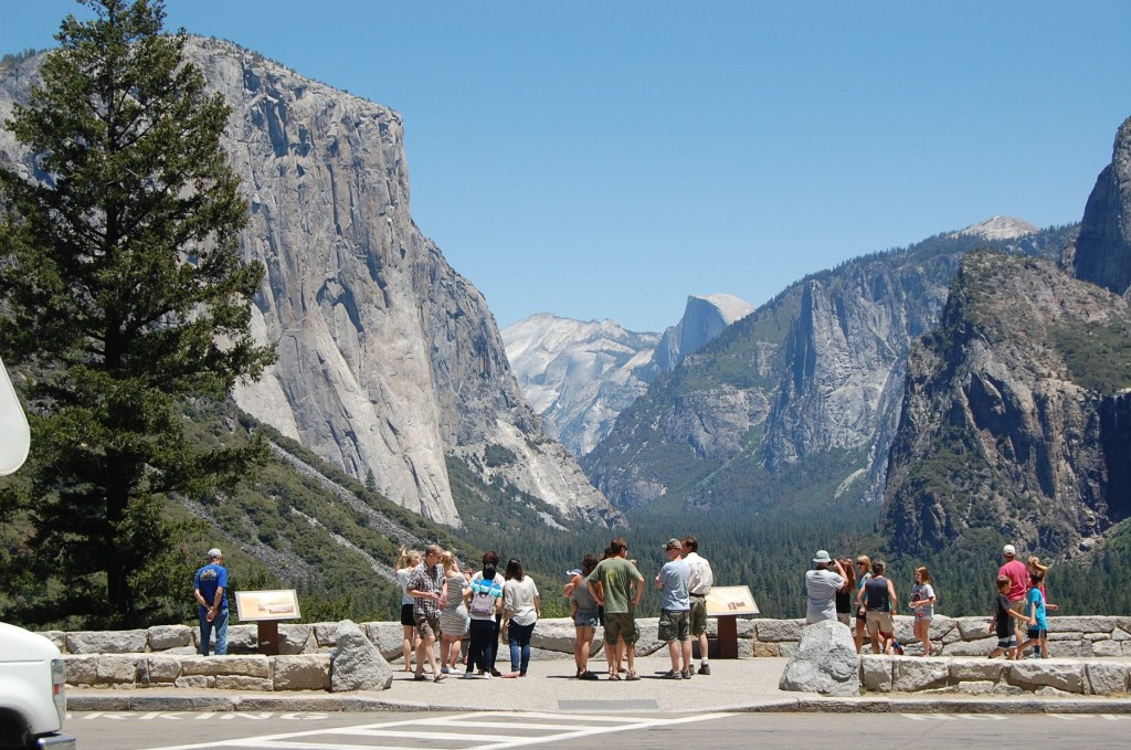 Tourists in Yosemite National Park (Eric Riess photo)
